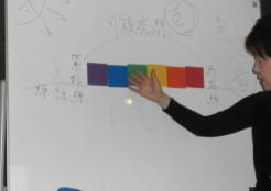 色彩心理テスト